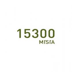 15300 Misia